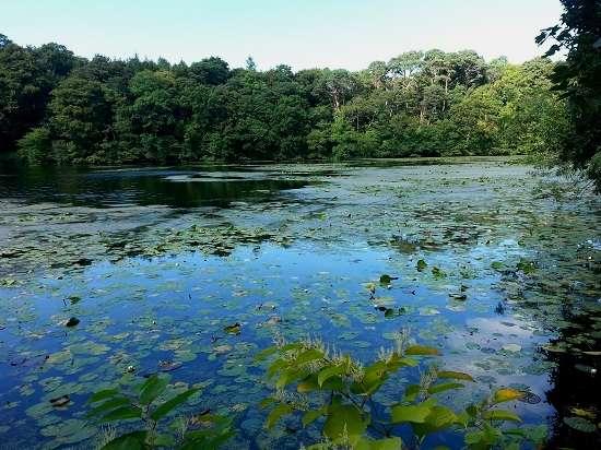 lakeside culzean castle and country park