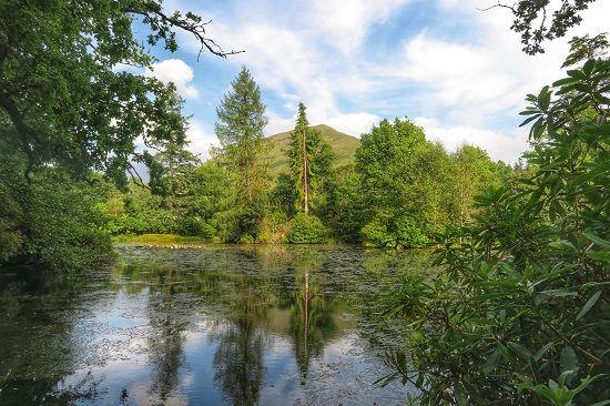 ardkinglas review estate