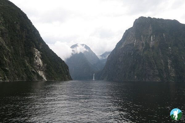 milford sound cruise highlights 3 weeks new zealand