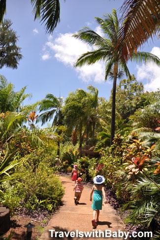 Tips for visiting kauai 39 s national tropical botanical - National tropical botanical garden ...