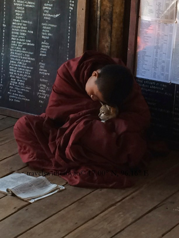 Young Monk in Mandalay
