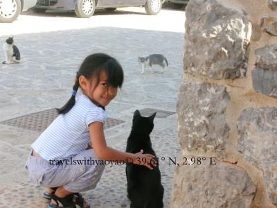 Kittens in Majorca