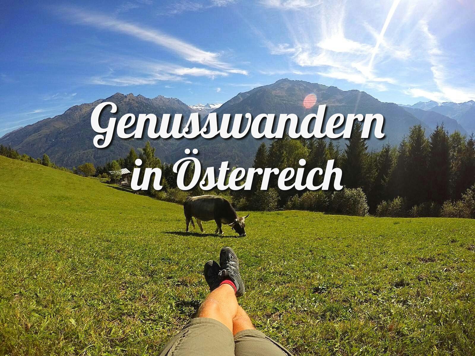 Fußboden Grass Osnabrück ~ 5 gründe für eine genusswanderreise in Österreichs wildkogel arena