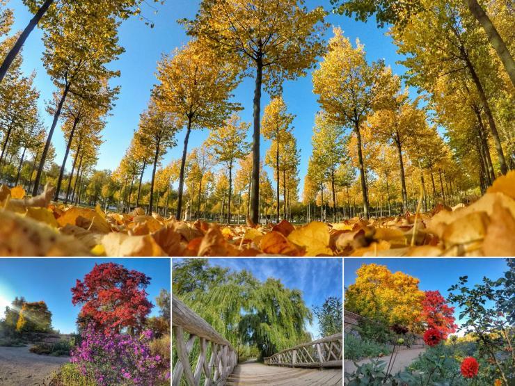 Herbststimmung am Schweriner See