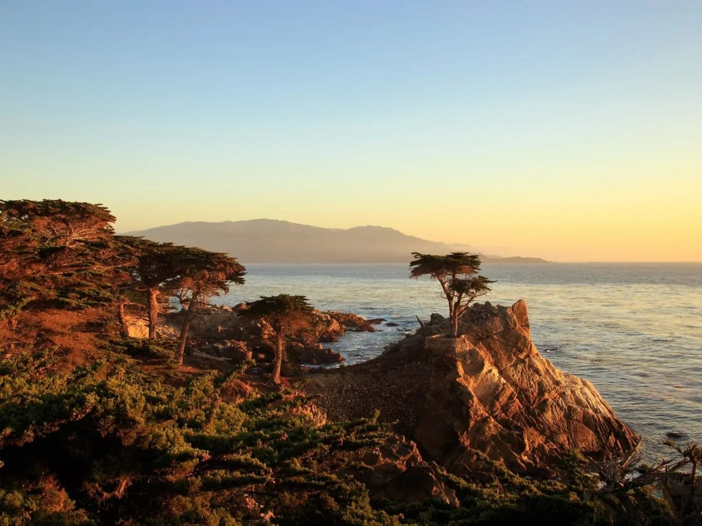 Pacific Coast Highway 17 mile drive | Pacific Coast Highway Travel Guide
