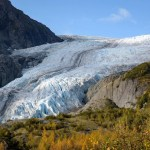 The Ultimate Guide To Kenai Fjords National Park
