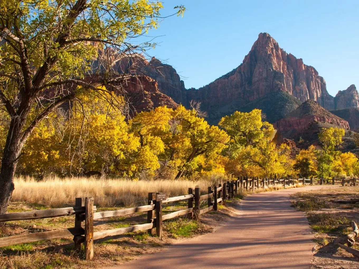 Canyon Junction | Zion National Park