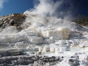 Mammoth Hot Springs | Yellowstone National Park