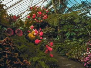 Myriad Botanical Gardens | Oklahoma Travel Guide