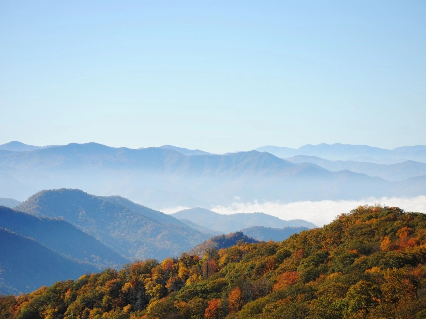 Newfound Gap Road | Great Smoky Mountains National Park