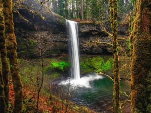 South Falls Silver Falls State Park