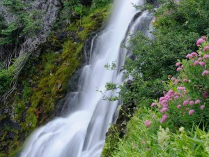Vidae Falls   Crater Lake
