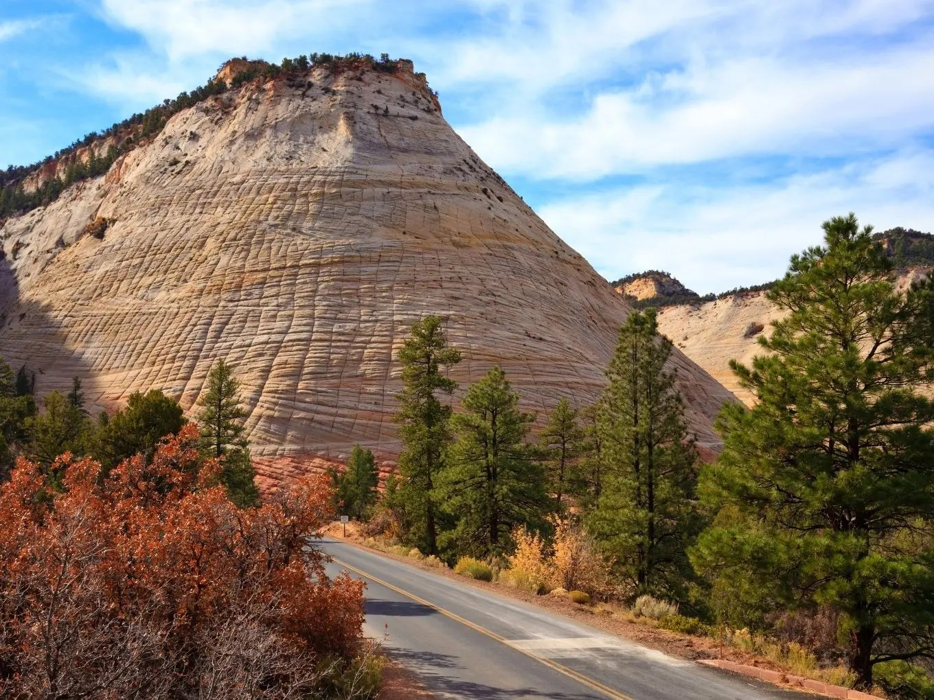 Zion National Park Scenic Drives