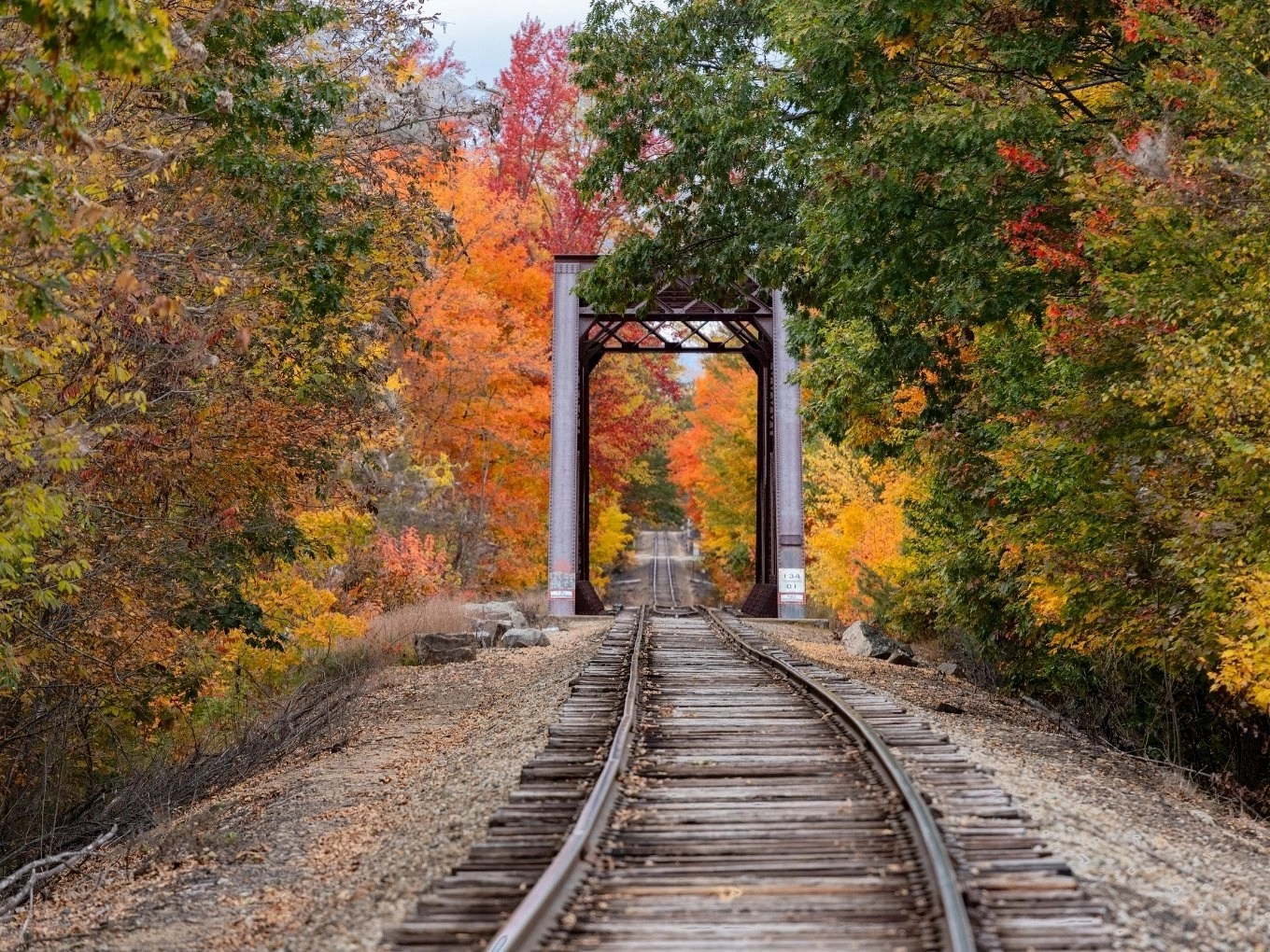 Planning Your Conway Scenic Railroad Excursion