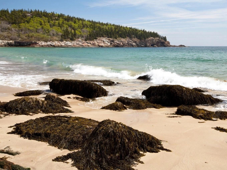 Sand Beach | Acadia National Park