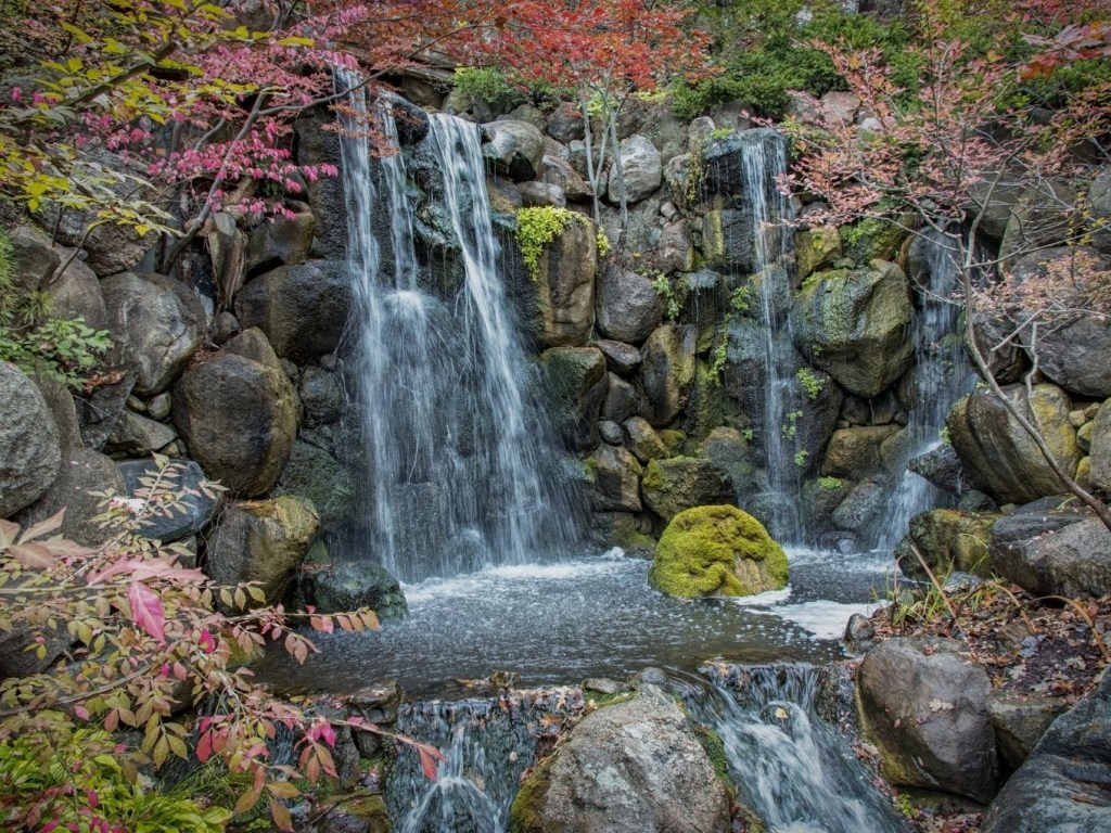 The Ultimate Guide To Anderson Japanese Gardens