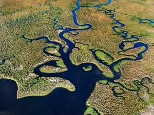 The Ultimate Guide To Everglades National Park   Florida
