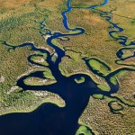 The Ultimate Guide To Everglades National Park | Florida