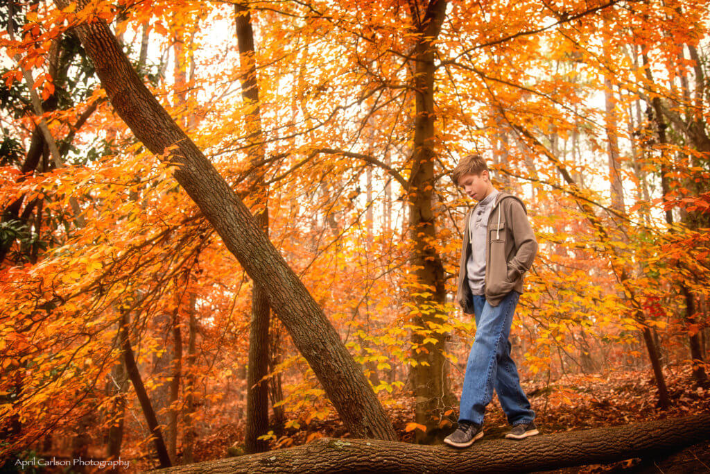 My 14 year old son casually walking down a fallen tree with the beautiful orange fall leaves of the forest behind him at Sope Creek