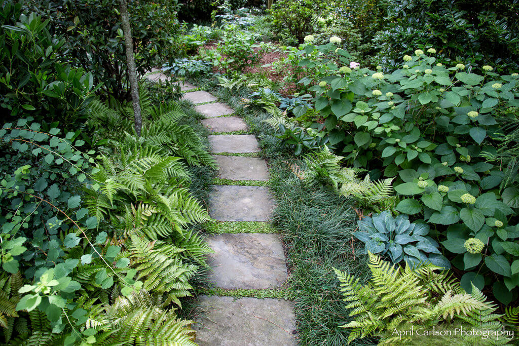 Gardens for Connoisseurs Tour 2017: Lovely shaded path