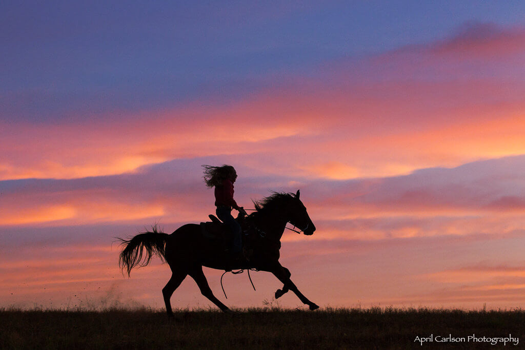 Horse Photography Workshop: Sunset with silhouette of girl riding her horse
