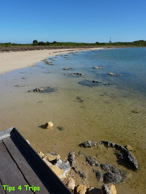 The living strombolites in lake Thetis. Learn what to expect at Lake Thetis located near Cervantes and the Pinnacles.