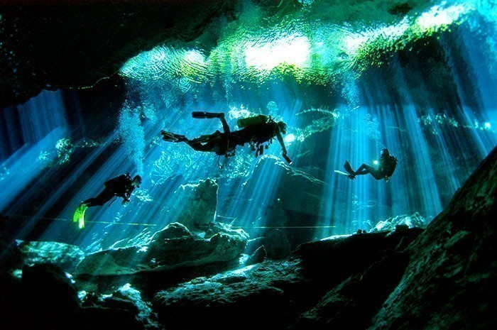 Scuba Diving In Playa Del Carmen cenotes