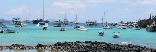 Tortuga Bay Tour –La Loberia Island Yacht Cruise
