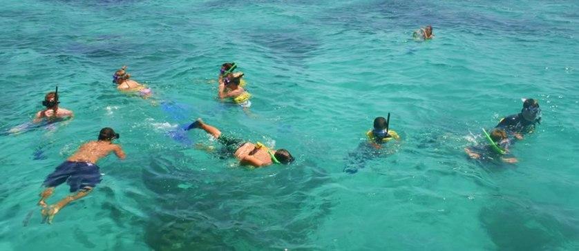 Fajardo Snorkeling