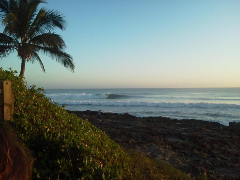 Stuart Rocks Surfing
