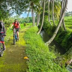 Biking Options In Bali