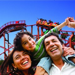 How To Stay Safe When You Visit Theme Parks