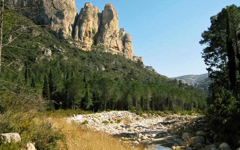 Ebro Delta Activities