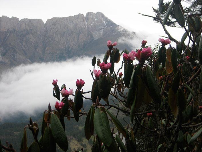 Zha Yi Zha Ga Mountain