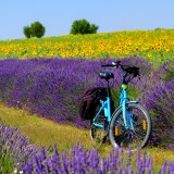 France Biking Spots That Are Gorgeous