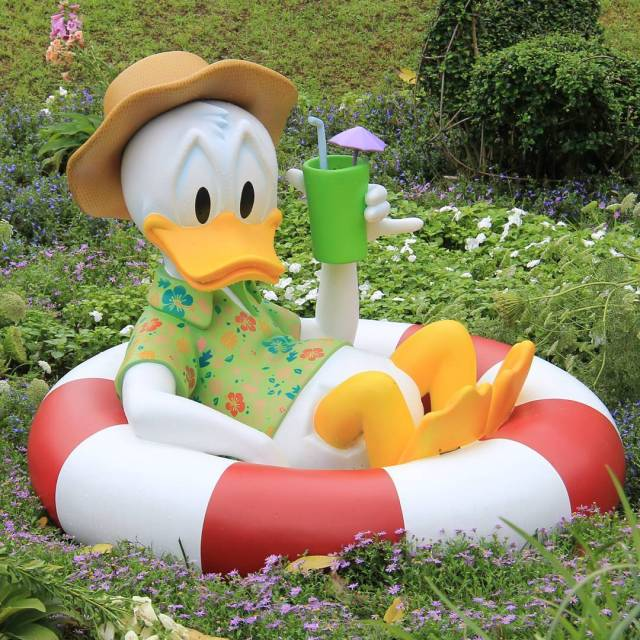 Donald is ready for vacation!
