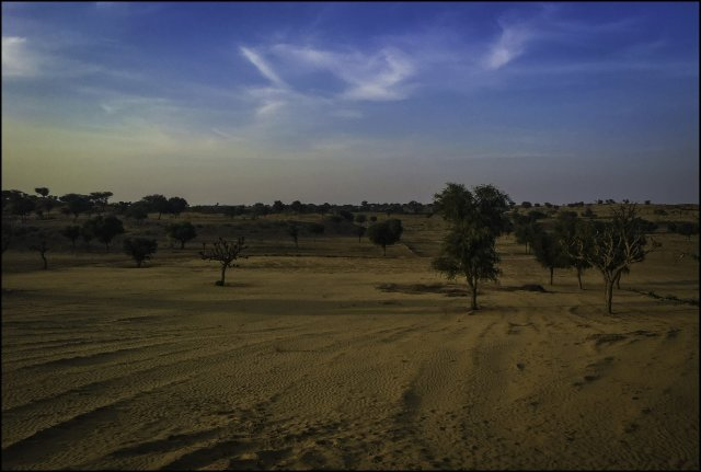 Desert landscapes of Rajasthan, India