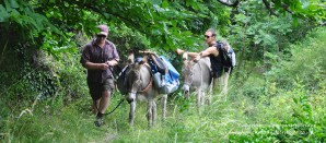 Walking with a donkey in the Cevennes