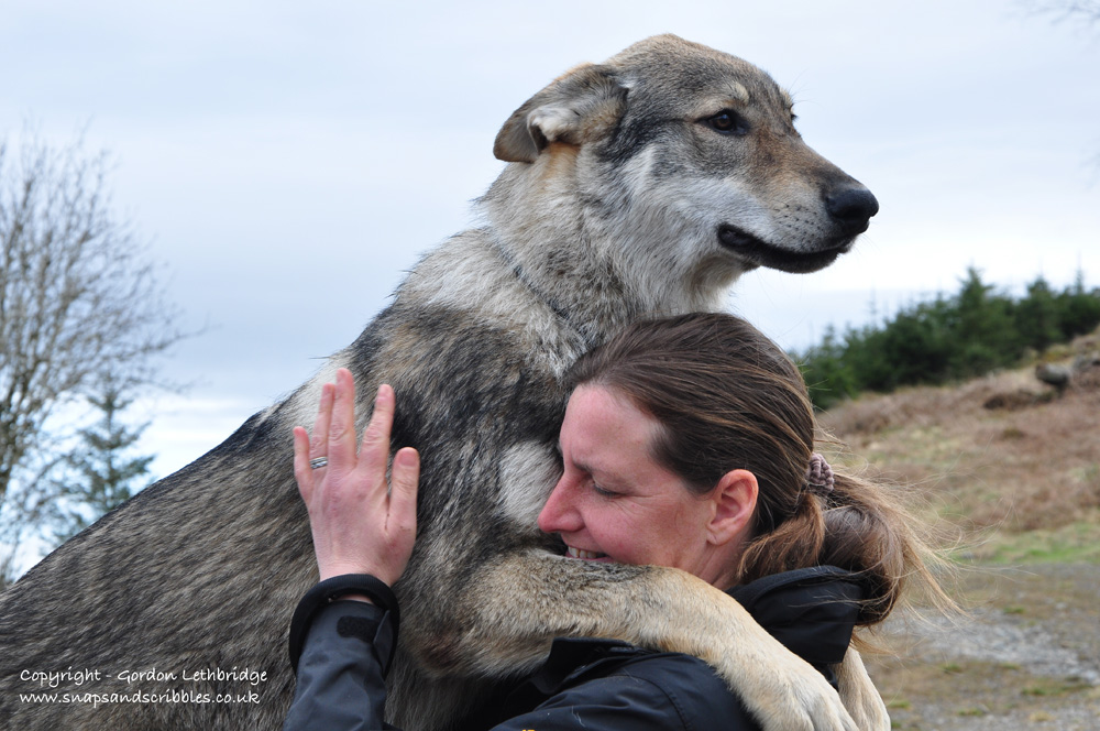 Dee with one of the wolves