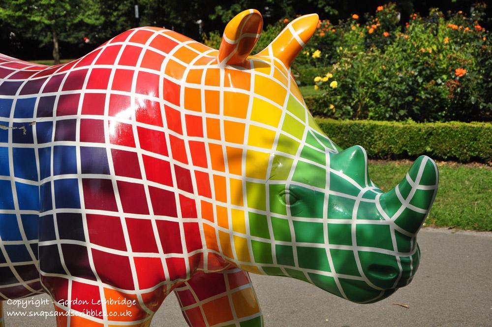 Go Rhino 003