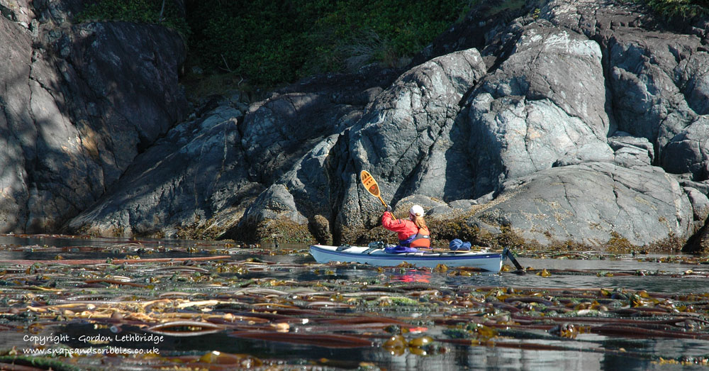 Kelp beds are best avoided but it is not always possible