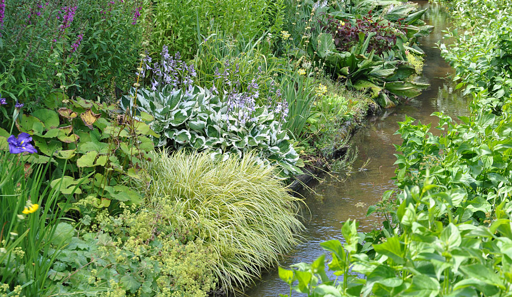Foliage beds beside the mill stream