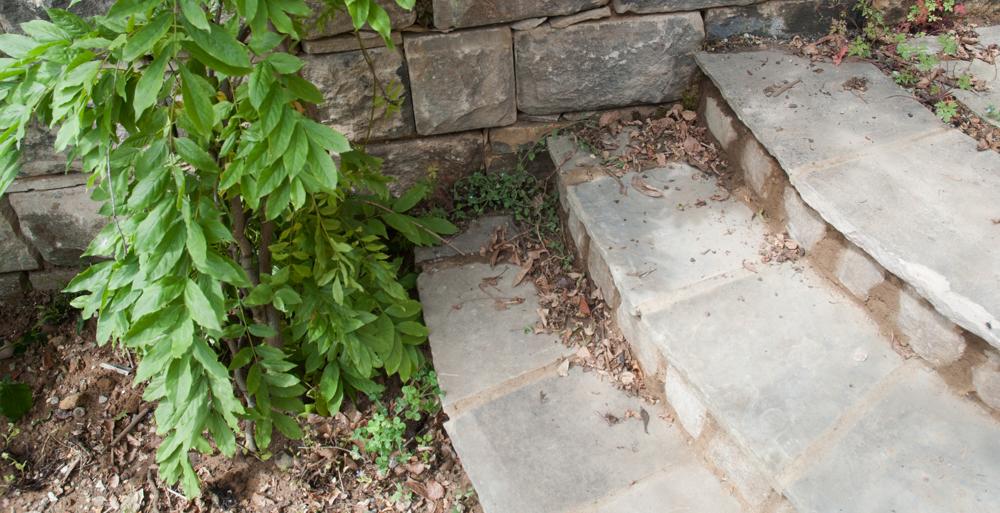 Galicia Garden 004
