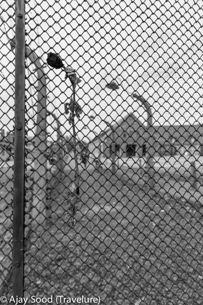 Haunting Photographs of Auschwitz Memorial Camp - WW-II Holocaust - Barbed Wire Fence