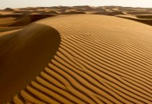 Dubai - The Sands of Future