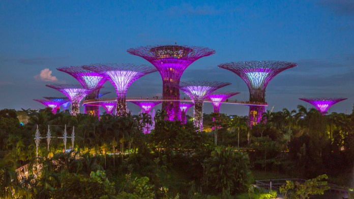 Supertree Grove - Singapore Super Structures to Look up to