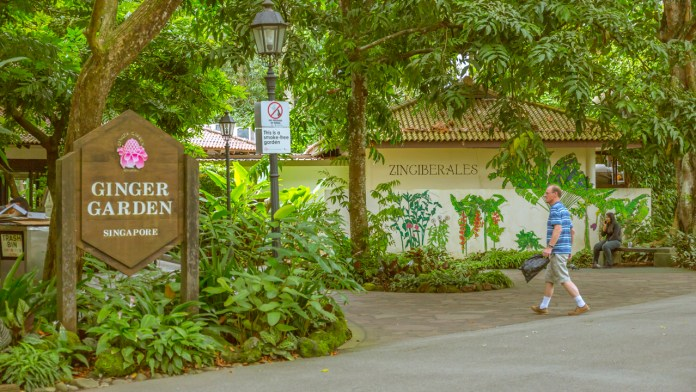 Singapore Botanic Gardens - A Forest in the City