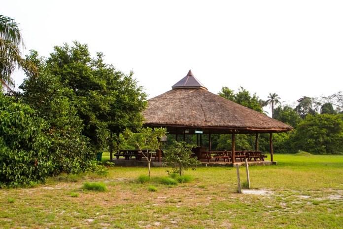 gazebbo at Lekki Conservation Centre