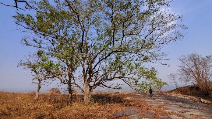 nature in Oyo Nigeria
