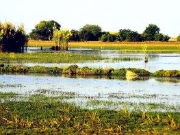 Bangweulu Wetlands